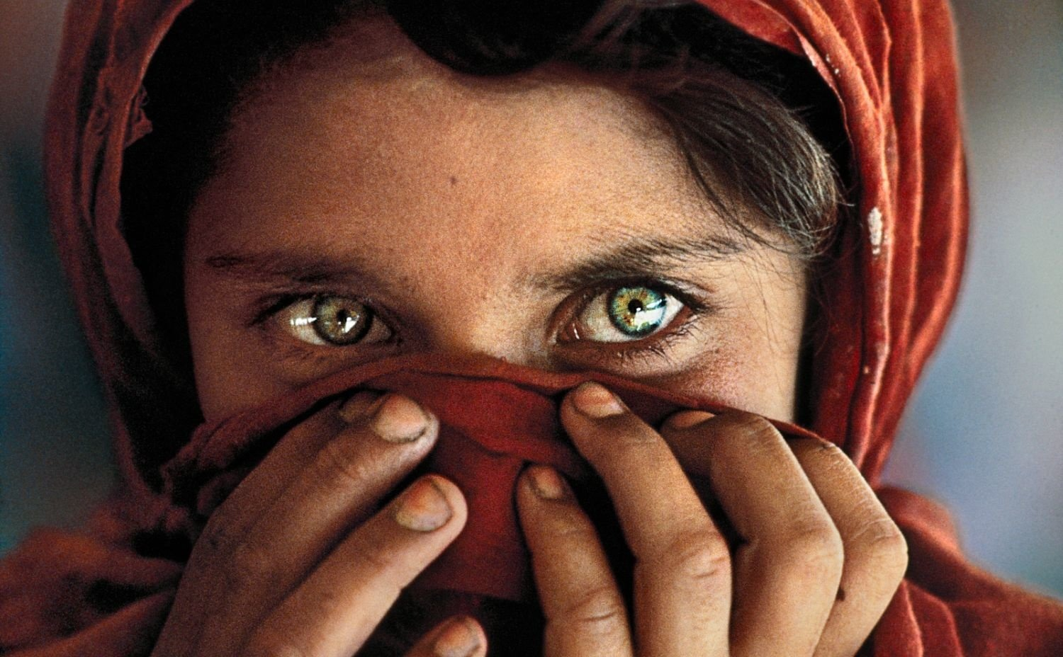 SteveMcCurry - La ragazza afghana